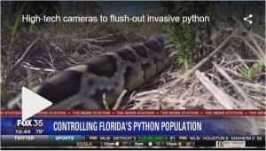 Camera to flush out invasive python