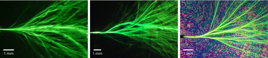 Laser light propagating in a thin liquid film forms branched flow channeling